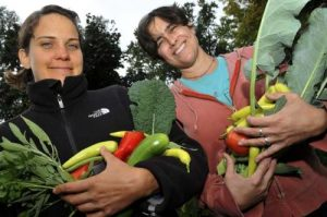 Krista Laraas (L) and Dina Kountoupes (R) from Harvest Moon Backyard Farmers hold some of their 2011 bounty from a client's backyard in Minneapolis Friday morning September 23, 2011. Harvest Moon Backyard Farmers provide grow-it-yourself garden kits, and supply gardening coaching for homeowners. (Pioneer Press: John Doman)