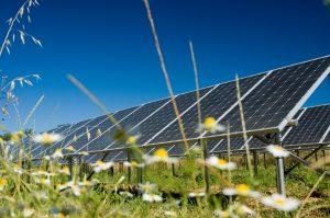 solar-gardenB