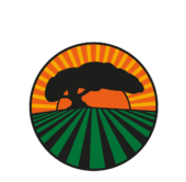 Alliance for Sustainability