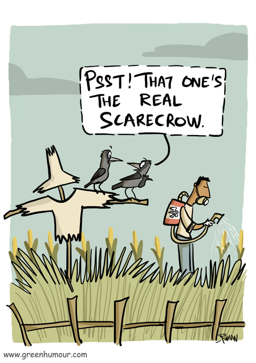 """Comic: Two crows perch on the arm of a scarecrow while they look at a man spraying pesticides on a field of corn. One of the crows points to the man and says """"Psst! That one's the real scarecrow."""""""